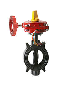 butterfly-valve--wafer-style-ductile-iron-butterfly-valve